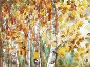 Watercolor Fall Aspens