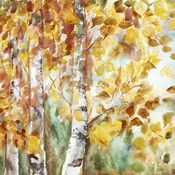 Watercolor Fall Aspens Square