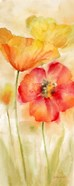 Watercolor Poppy Meadow Spice Panel I