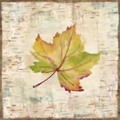 Nature Walk Leaves III