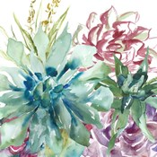 Succulent Garden Watercolor II