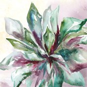 Succulent Watercolor II