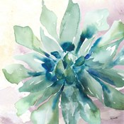Succulent Watercolor III