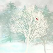 Winter Wonder II