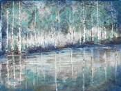 Aspen Pond