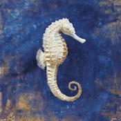 Treasures from the Sea Indigo I