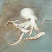 Treasures from the Sea V