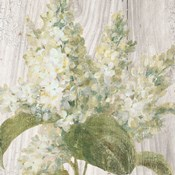 Scented Cottage Florals II Crop