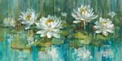 Water Lily Pond Crop