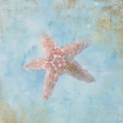 Treasures from the Sea IV Watercolor