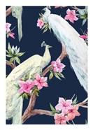Paradis Birds II
