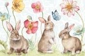 Spring Softies Bunnies I