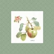 Orchard Bloom I Border