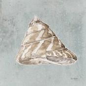 Sand and Seashells IV