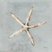 Sand and Seashells III