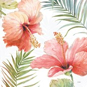 Tropical Blush II