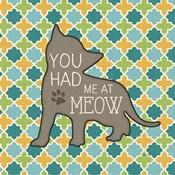 Cat Sayin II