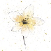 Gilded Graphite Floral II