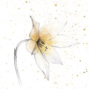 Gilded Graphite Floral VIII