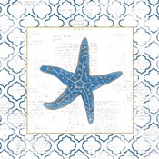 Navy Starfish on Newsprint with Gold