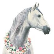 Spirit Stallion I Square