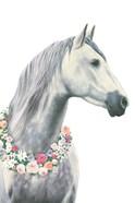 Spirit Stallion I