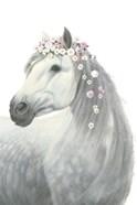 Spirit Stallion II