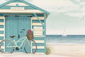 Beach Cruiser I