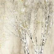 Blue Birch Neutral