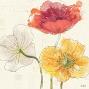 Painted Poppies V