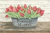 Farmer's Market Tulips