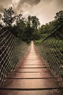 Wilderness Walkway
