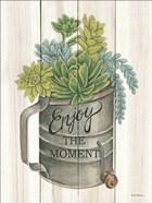 Enjoy the Moment Succulents