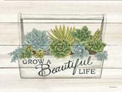 Beautiful Life Succulents