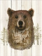 Bear Wilderness Portrait