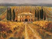 Toscana Vigna Special