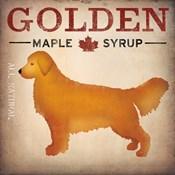 Golden Dog at Show No VT