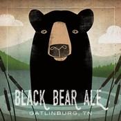 Skinny Dip Black Bear Ale