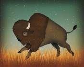 Buffalo Bison II