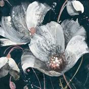 Transluncent Poppies Navy