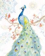 Jaipur II