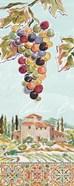 Tuscan Breeze V