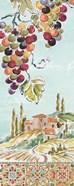 Tuscan Breeze IV