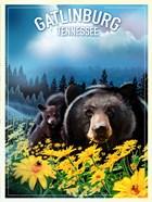 Gatlinburg Tennessee