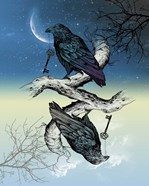 Raven Night and Day