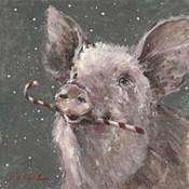 Teri the Christmas Pig