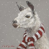 Llama with Red and White Scarf