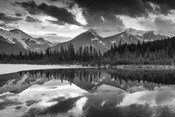 Vermillion Reflection BW