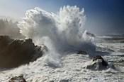 Oregon Shore Acres SP Wave