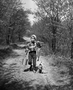 1950s Boy With Beagle Puppy